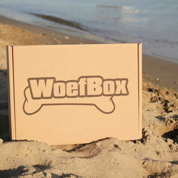 Summertime-woefbox